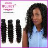 Quercy Hair Top Quality 100%년 Human 인도 Deep Wave Hair (w-075)