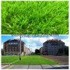 Het gras voerde Groene Spoorwegen in Europa