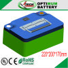 Tiefes Cycle Lithium-Ion Battery Pack 24V 30ah
