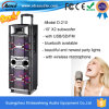 Wireless Mic를 가진 Creartive Dual 10 Inch Outdoor Rechargeable PA Speaker