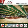 3m-60m 폭 판매를 위한 체더링 천막을 식사하는 알루미늄 명확한 경간 천막