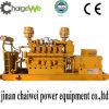 人エンジンと共同する生物ガスの発電機セット