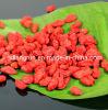 Bacca organica di 100% Goji in 220-500 Grains/50g