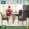 庭のテラスの枝編み細工品/セット(TG-608)を食事する藤の家具