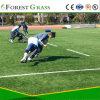 Le Gazon artificiel pour le Soccer Football Sporting (SEL)