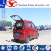 elektrische die Auto met 4 wielen in China met Auto Ce/Electric/Elektrisch voertuig/Auto/MiniAuto/het Voertuig van het Nut/Auto's/Elektrische Auto's/Mini Elektrische Auto/ModelAuto/ElektroAuto wordt gemaakt
