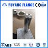 L'acciaio inossidabile ha forgiato la flangia 45*180L (PY0074)