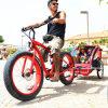 Neumático Fat bicicleta eléctrica para el hombre