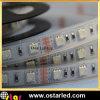 Specifica impermeabile della luce di striscia del tubo LED di PrSilicon IP67oduct della striscia di RGB LED:<br />1. Tipo del LED: SMD5050/3528<br />2. Qty del LED: 30LEDs/m, 60LEDs/m<br />3. Potere: 5050:30 LEDs-7.2W/m, 60LEDs-14.4W/m<br />3528:60 LEDs-4