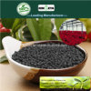 Il carbonio di Kingeta ha basato il fertilizzante composto NPK 8-6-18 per il fiore