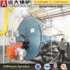 Exécution efficace en employant la chaudière à eau chaude à gaz normale de série de Wns