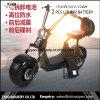 Grande motorino elettrico grasso della rotella 1500W di Citycoco per gli adulti