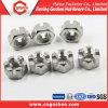 Acier inoxydable de DIN979 M6-M52 304 noix encochées minces d'hexagone