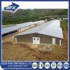 Casa de pollo/granja avícola/casa de pollo prefabricadas de la capa