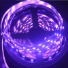 Flexibler Streifen des LED-Streifen-5050 60LEDs 24V RGBW LED
