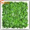 Parete verde di plastica artificiale dell'erba dei fogli di angolo della parete cinque