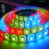 고품질 RGB 60LEDs/M SMD5050 가동 가능한 LED 지구