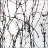 Neues aufbereitetes Panel des Acrylharz-2013 (G-0901-B)