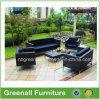 現代テラスの庭の藤の屋外の家具