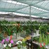 新しいPEの温室の紫外線の野菜陰のネット(YHZ-SDN03)
