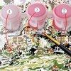 화포 색칠에 Numbers DIY 그림 그림 그림물감에 의하여 유성 페인트 색칠