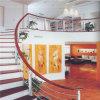 Barandilla de acero del pasamano de Staniless para la escalera de la casa