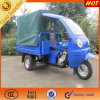 Cargo Motorized Tricycle를 위한 ABS Canopy