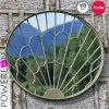 Miroir décoratif de classe de jardin antique en métal de cru