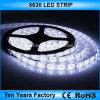 Migliore striscia di prezzi 60LEDs 12V SMD 5630 LED