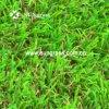 45mm jardin paysager de gazon artificiel de loisirs (SUNQ-AL00070)