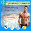 Parabolan Qualitäts-Steroid pulverisiert Trenbolone Hexahydrobenzyl Karbonat CAS 23454-33-3