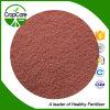 Água - fertilizante solúvel 16-8-16+Te do pó de NPK