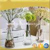 Venda quente de vaso de vidro claro / Decoração para casa flor vaso de vidro com flor