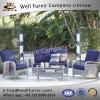 Vimine buono di Furnir Wf-17028 gruppo della disposizione dei posti a sedere del sofà delle 4 parti