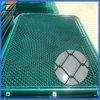 좋은 가치 PVC 입히는 체인 연결 담 (중국 제조자)