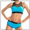 O OEM personaliza o biquini do roupa interior do Swimwear da praia das mulheres da forma