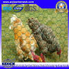 Engranzamento revestido da galinha do PVC com (CE e GV)