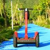 小型新しいモデルの電気スクーター(ESIII)