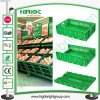 Supermercato Plastic Collapsible Vented Crate per Vegetables