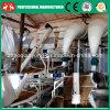 Kleine Wassermelone, Kürbis-Startwert- für Zufallsgeneratorenthülsung/, die Geräten-Zeile schält