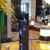 Muestra de aluminio Mirrorlike excepcional del pilón