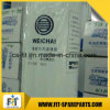 Fijne Filter 612630080087 van de Brandstof van Weichai