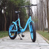 Bici eléctrica gorda plegable 48V 500W de Ebike de la más nueva mujer 20 ''