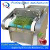 음식 기계장치 절단기 잎 야채 절단기