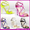 Popular europeo al por mayor Color More Fashionable Heel Sandals en Summer