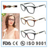 Het recentste Nieuwe Optische Oogglas van Eyewear van het Frame van de Acetaat van het Ontwerp