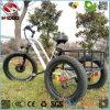 싼 판매를 위한 500W 뚱뚱한 타이어에 의하여 사용되는 전기 세발자전거