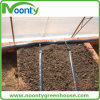 Micro nastro dello spruzzo per la frutta delle verdure della serra