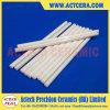 Zirconia Roces Polished de cerámica de la alta precisión
