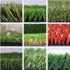 مقاومة متحمّل [أوف] عشب اصطناعيّة اصطناعيّة لأنّ حديقة